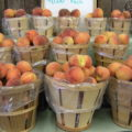 Orr's Farm Market Peaches