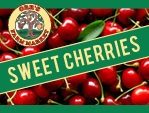 Pick Your Own Sweet Cherries