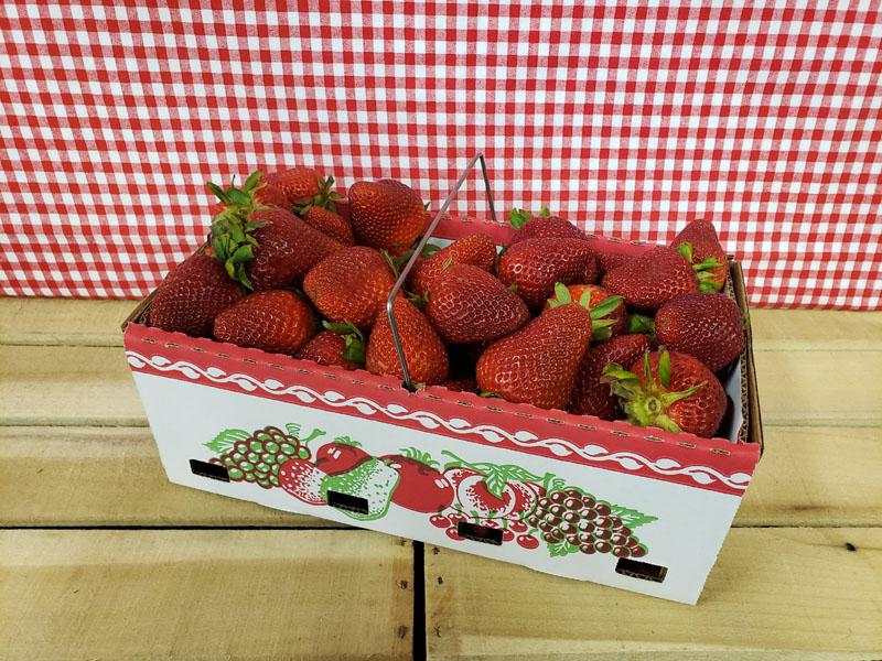 PYO Strawberries Half Peck Basket