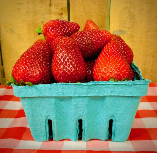 PYO Strawberries Quart