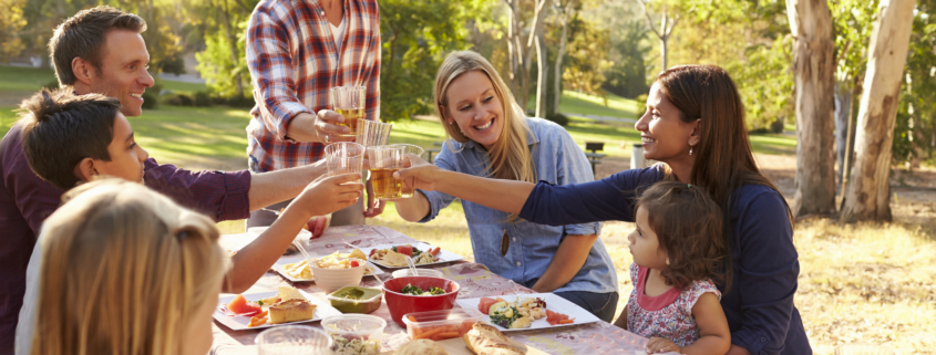 Two families making a toast at picnic at a table in a park