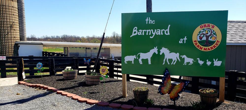 The Barnyard at Orr's Farm Market