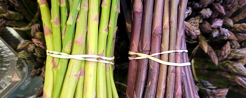 Orrs Asparagus